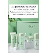 EXGYAN Подарочный набор для омоложения кожи лица с полипептидами центеллы+подарочный пакет