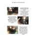 Легкий увлажняющий тональный кушон для лица Jomtam, 02 цвет слоновой кости