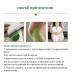 Лечебный пластырь для коленного сустава с экстрактом полыни