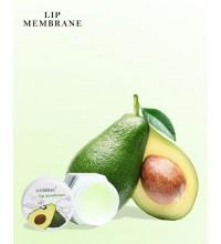 Ночная увлажняющая маска-бальзам для сухих и обветренных губ с экстрактом авокадо VASEINA